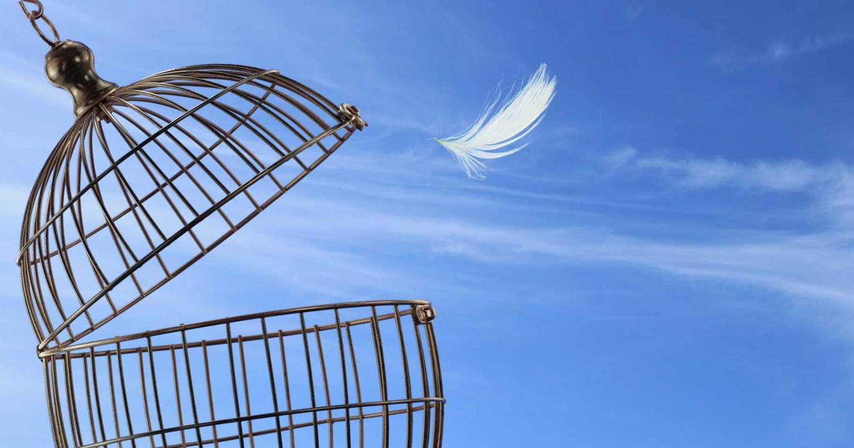Psicoterapia Roma: quando intraprenderla e a chi rivolgersi