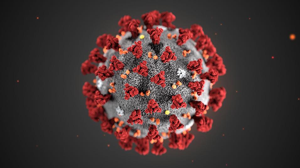 Stress e trauma: effetti psicologici su individui e famiglie in tempi di Coronavirus